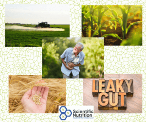 Bt toxins, Glyphosate and your gut health