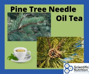 Pine Tree Oil Tea for immune system